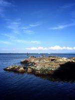 猿島12.jpg